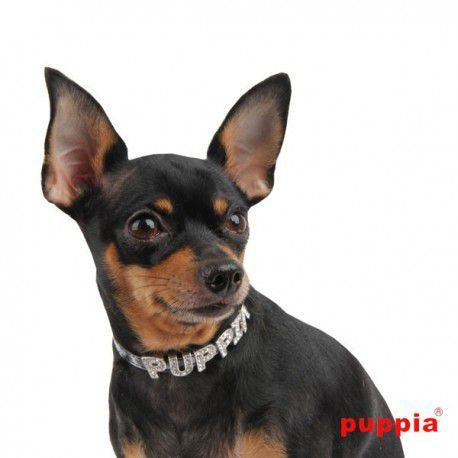 Coleira Puppia Maya