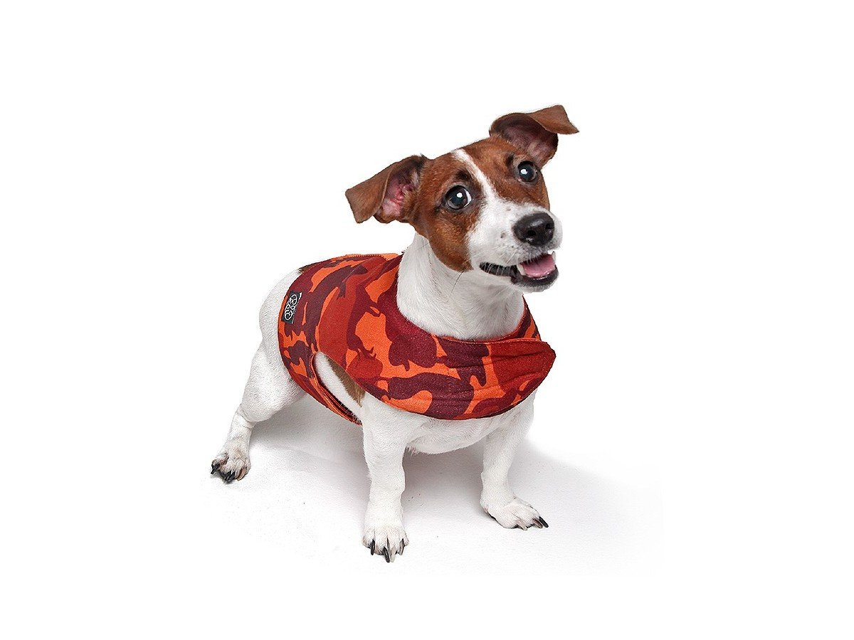 Guia + Coleira Peitoral Dog&Roll Bazooka - G