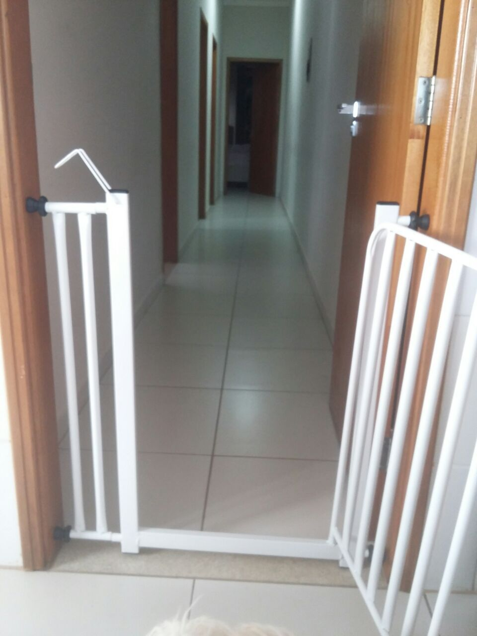 Portão Pet Aramado de 70cm + Prolongador 10cm
