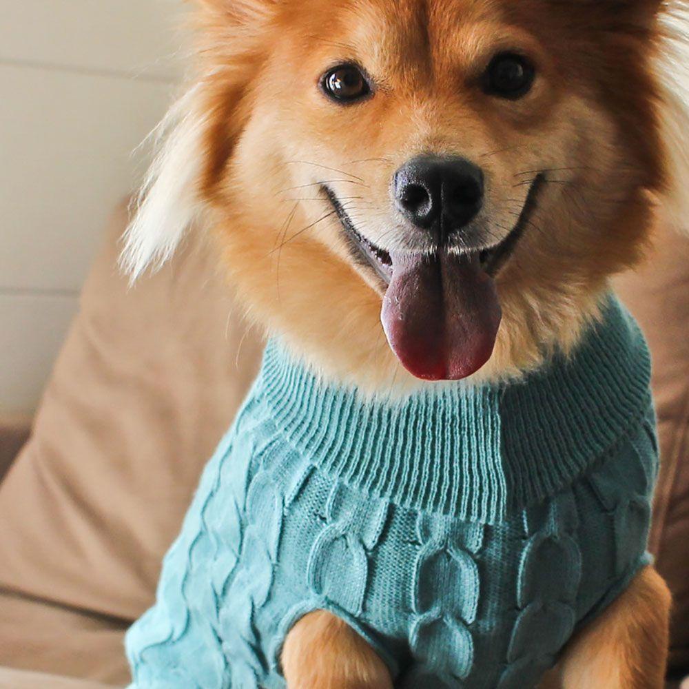 Roupa de Tricô Trança Sem Manga para cachorro Hello Pets