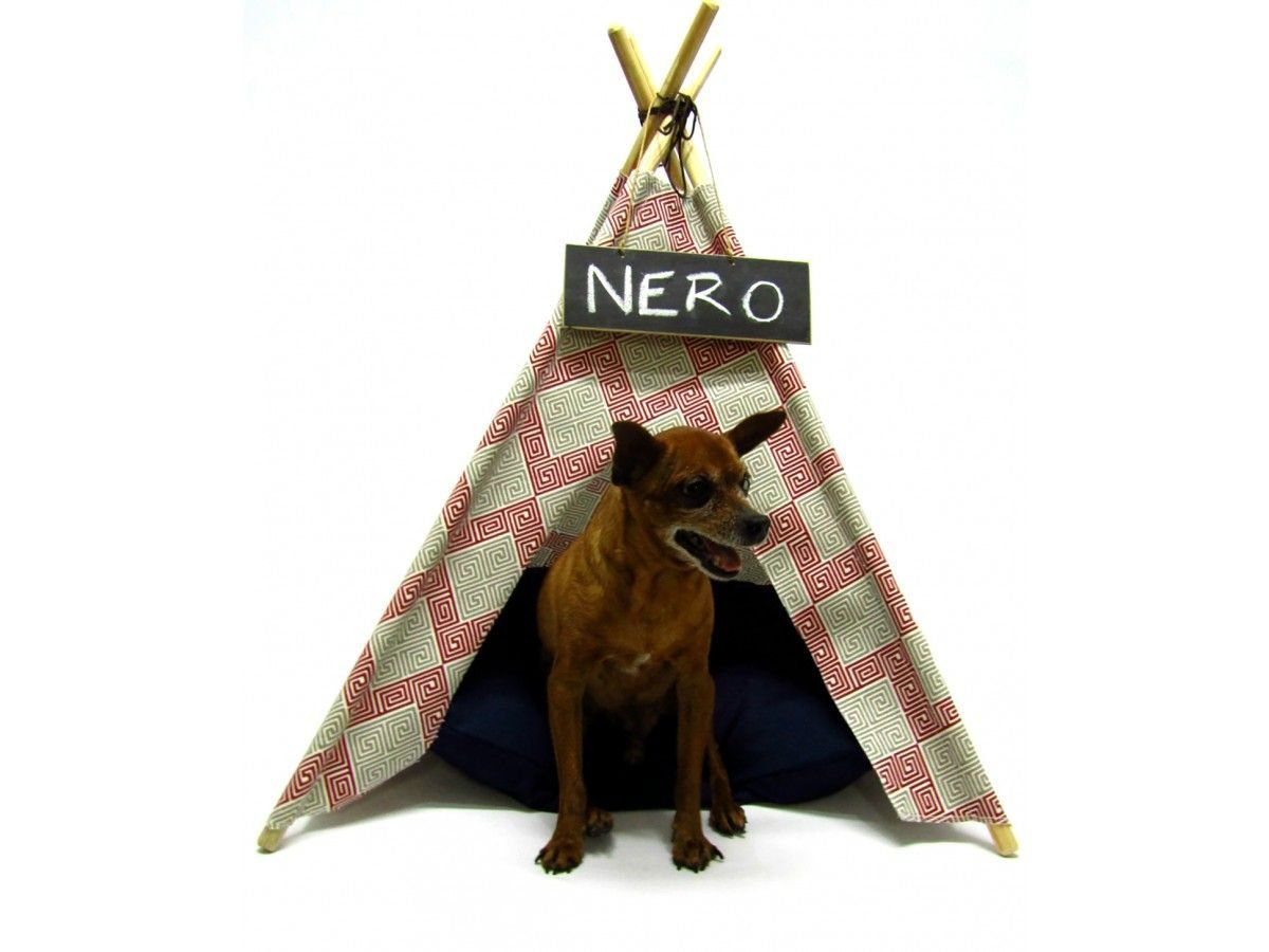 Tenda para Cachorro Comics