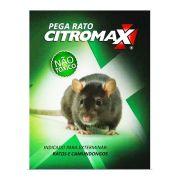 CARTELA PEGA RATO CITROMAX (CX 2UN)