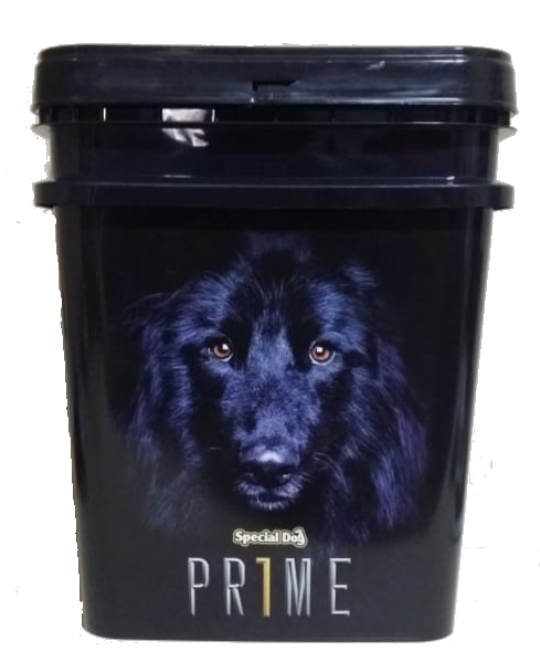 BALDE SPECIAL DOG PRIME