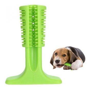 Brinquedo Mordedor Escova De Dente Cachorro Dog Cão Pet