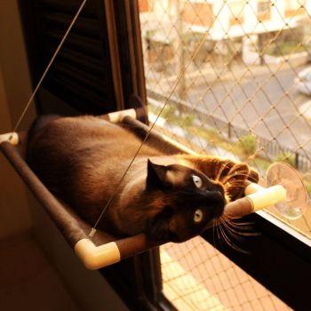 Cama De Gatos Para Janela Suspensa Catbed Parede Suede