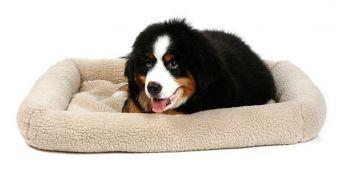 Caminha Suiça Para Cachorros Cães Luxo Pelucia Bege Tamanho G