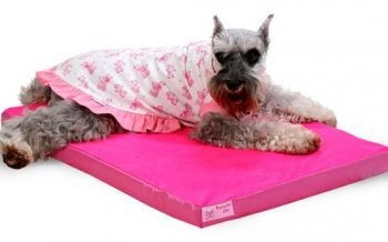Colchão Resistente Para Cachorros Cães Tamanho P