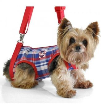 Mochila Para Transporte De Cachorros Cães Motos Tamanho M