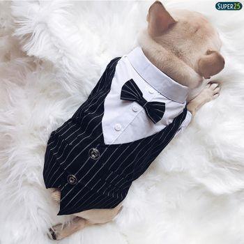 Roupa Terno Pet Social Aniversário Casamento Noivo Smoking