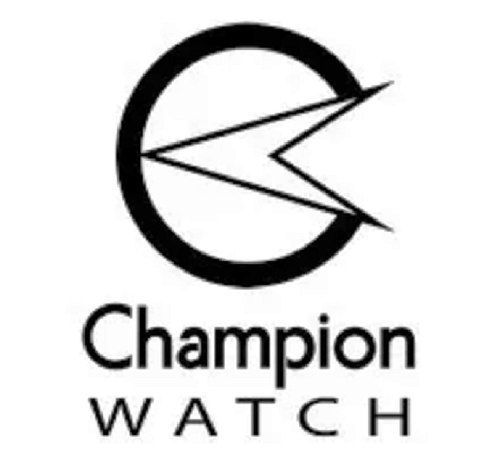 Relógio Feminino Champion Original Prata E Dourado Cn26144b