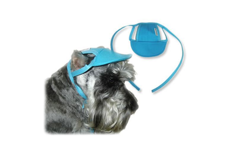 Boné Viseira Para Cachorros Cães Tamanho P