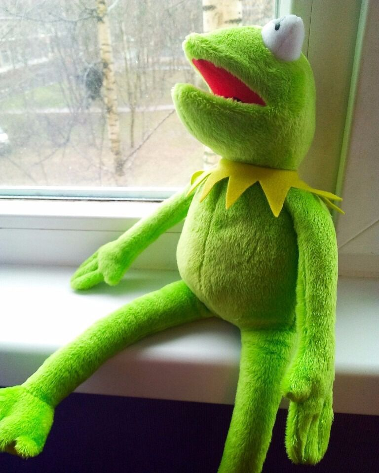 Kako Muppets Baby Show De Pelúcia Kermit Sapo 42 Cm Caco