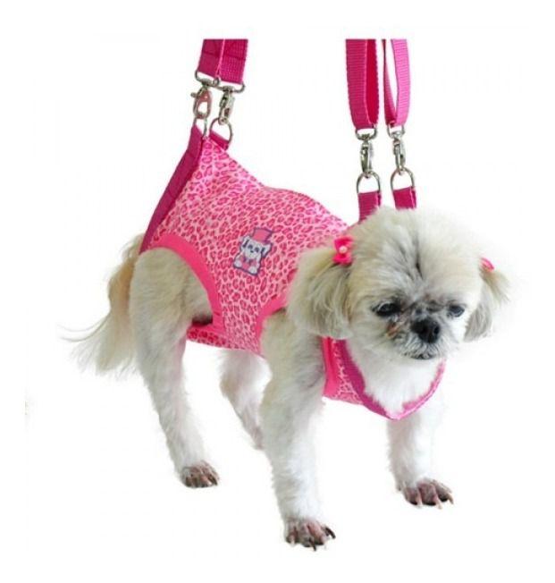 Mochila Para Transporte De Cachorros Cães Motos Tamanho GG
