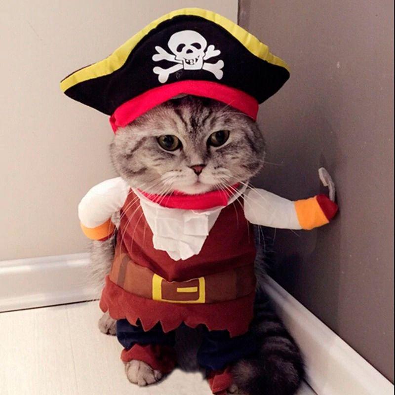 Roupinhas Cães Gatos Cachorro Fantasia Pirata Roupa Pet