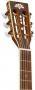 Violão Acústico Washburn WP21SNS Parlor Natural Satin