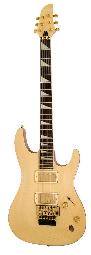Guitarra Custom Series - LEGEND STX - BENSON