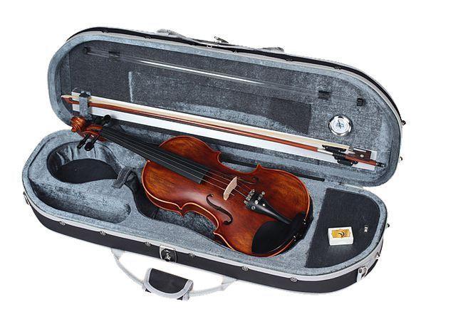 Violino Vignoli Vig 644 4/4 Profissional