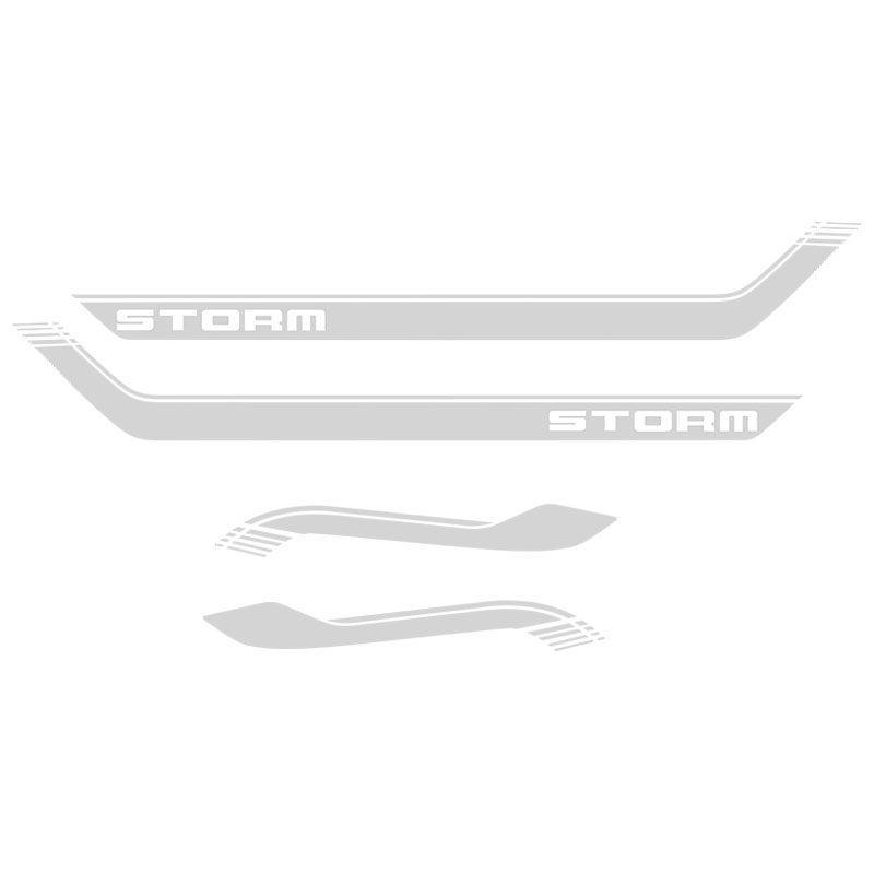 Kit Faixa Lateral Capô Ecosport Storm Completo Adesivo Prata