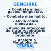 Gengibre 400mg - 60 cápsulas - Combate enjôo, gases, indigestão, Acelera do Metabolismo