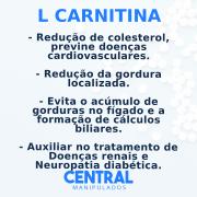 L Carnitina 500mg - 120 cápsulas