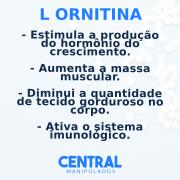 L Ornitina 300mg - 60 cápsulas - Estimula produção do hormônio do crescimento, incrementa a massa muscular, diminui tecido gorduroso, ativa imunidade e a função hepática