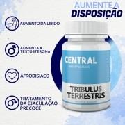 Tribulus Terrestris 500mg - 60 cápsulas - Afrodisíaco