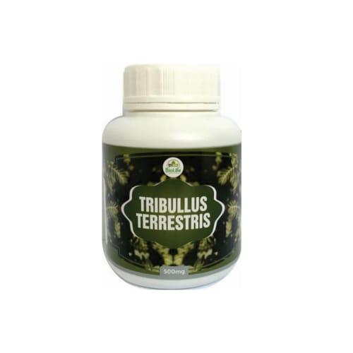 TRIBULUS TERRESTRIS 500MG - 100  CAPSULAS - AFRODISIACO
