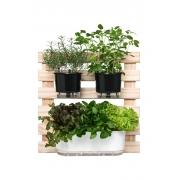 Horta Vertical Creme 60cm x 60cm com 1 Jardineira e 2 Vasos Médios