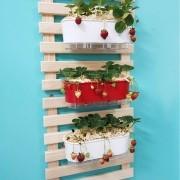 Kit Horta de Morangos 60cm x 100cm com 3 Jardineiras