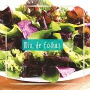 Sementes para plantar mix de folhas Baby Leaf em vasos autoirrigáveis RAIZ