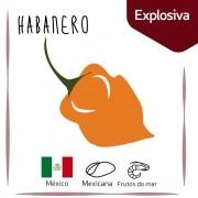 Sementes para plantar Pimenta Habanero em vasos autoirrigáveis RAIZ