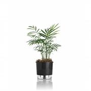 Vaso Autoirrigável Pequeno 12cm x 11cm N02