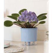 Vaso Autoirrigável Pequeno 12cm x 11cm Azul Serenity Wishes N02