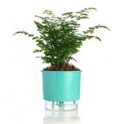 Vaso Autoirrigável Verde Raiz Médio 16cm x 14cm N03