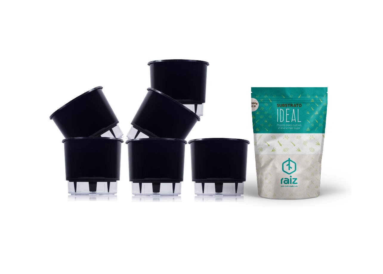 6 Vasos Pequenos N02 + Substrato Ideal  - Loja Raiz