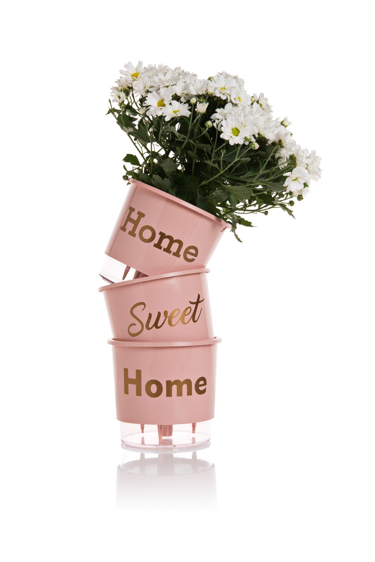 Conjunto 3 Vasos Autoirrigáveis Rosa Quartz Pequenos 12cm x 11cm Home Sweet Home  - Loja Raiz