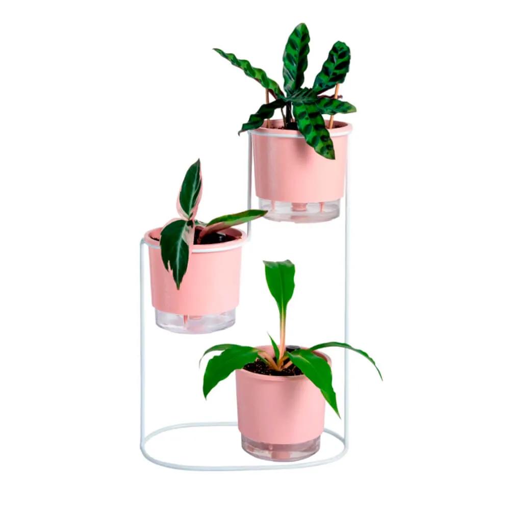 Conjunto Mini Plant Gang  - Vasos Raiz Loja Oficial