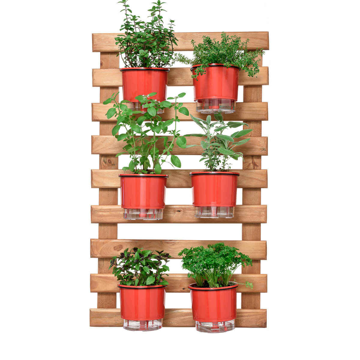 Kit Horta Vertical 60cm x 100cm com 6 Vasos Vermelhos  - Vasos Raiz Loja Oficial