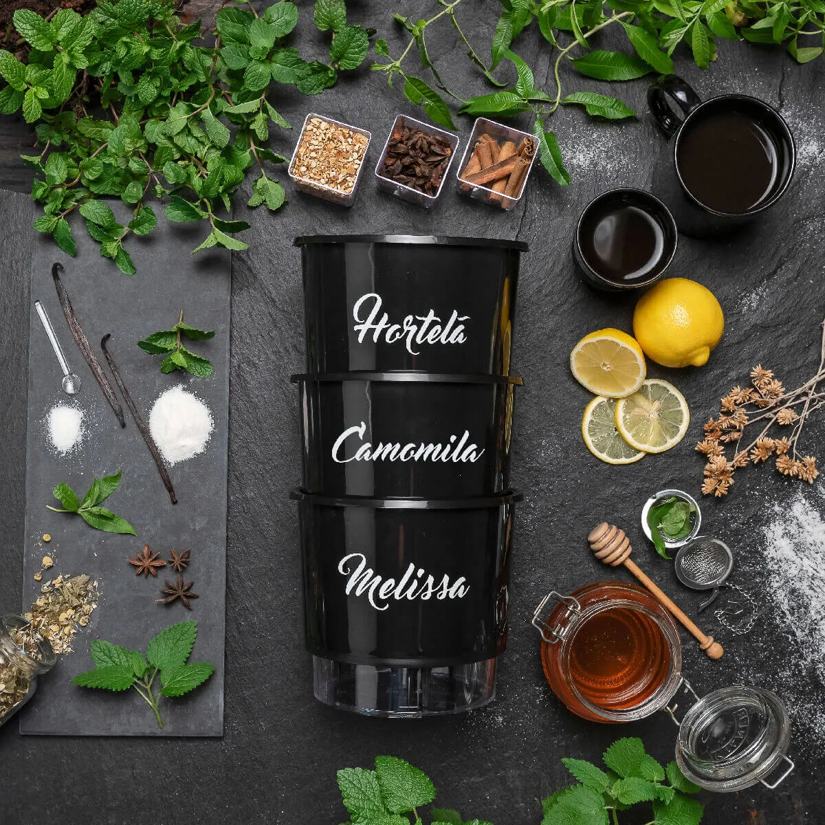 Kit Plantio Completo Gourmet Chás  - Vasos Raiz Loja Oficial