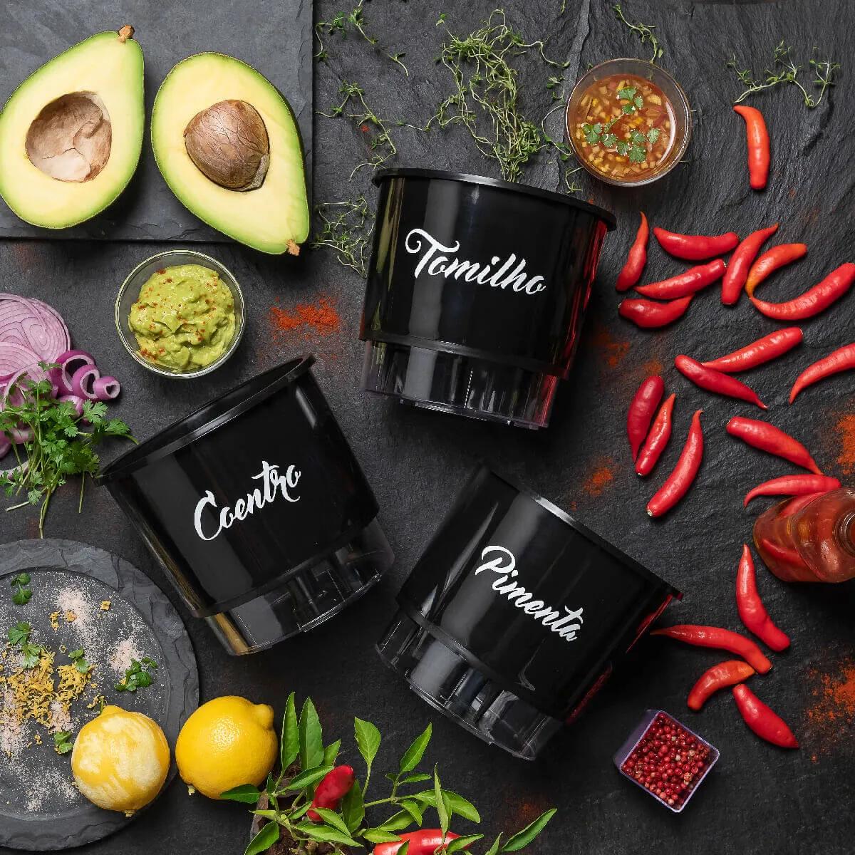 Kit Plantio Completo Gourmet México  - Vasos Raiz Loja Oficial