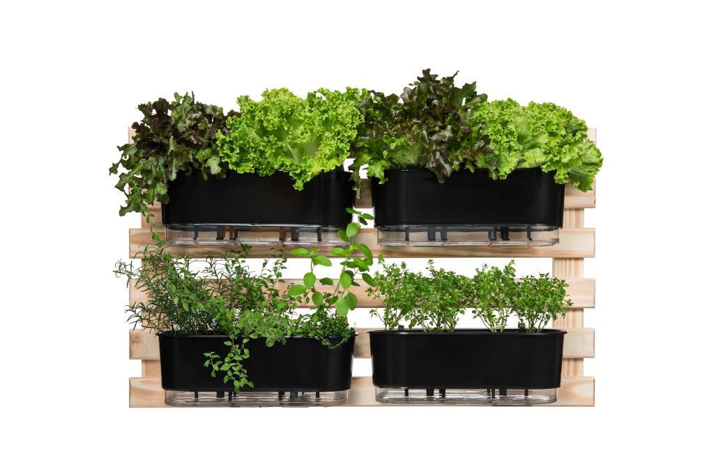 Horta Vertical Creme 100cm x 60cm com 4 Jardineiras  - Loja Raiz