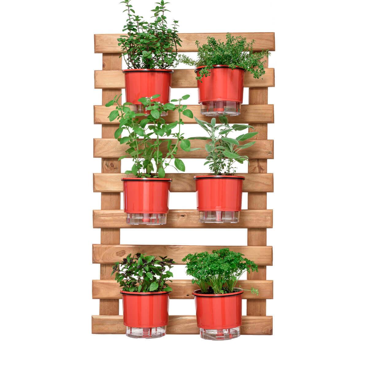 Horta Vertical Caramelo 60cm x 100cm, 6 Vasos e Suporte Preto  - Loja Raiz
