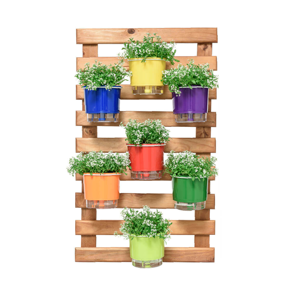 Horta Vertical Caramelo 60cm x 100cm, 7 Vasos Rainbow Médios e Suporte Branco  - Loja Raiz