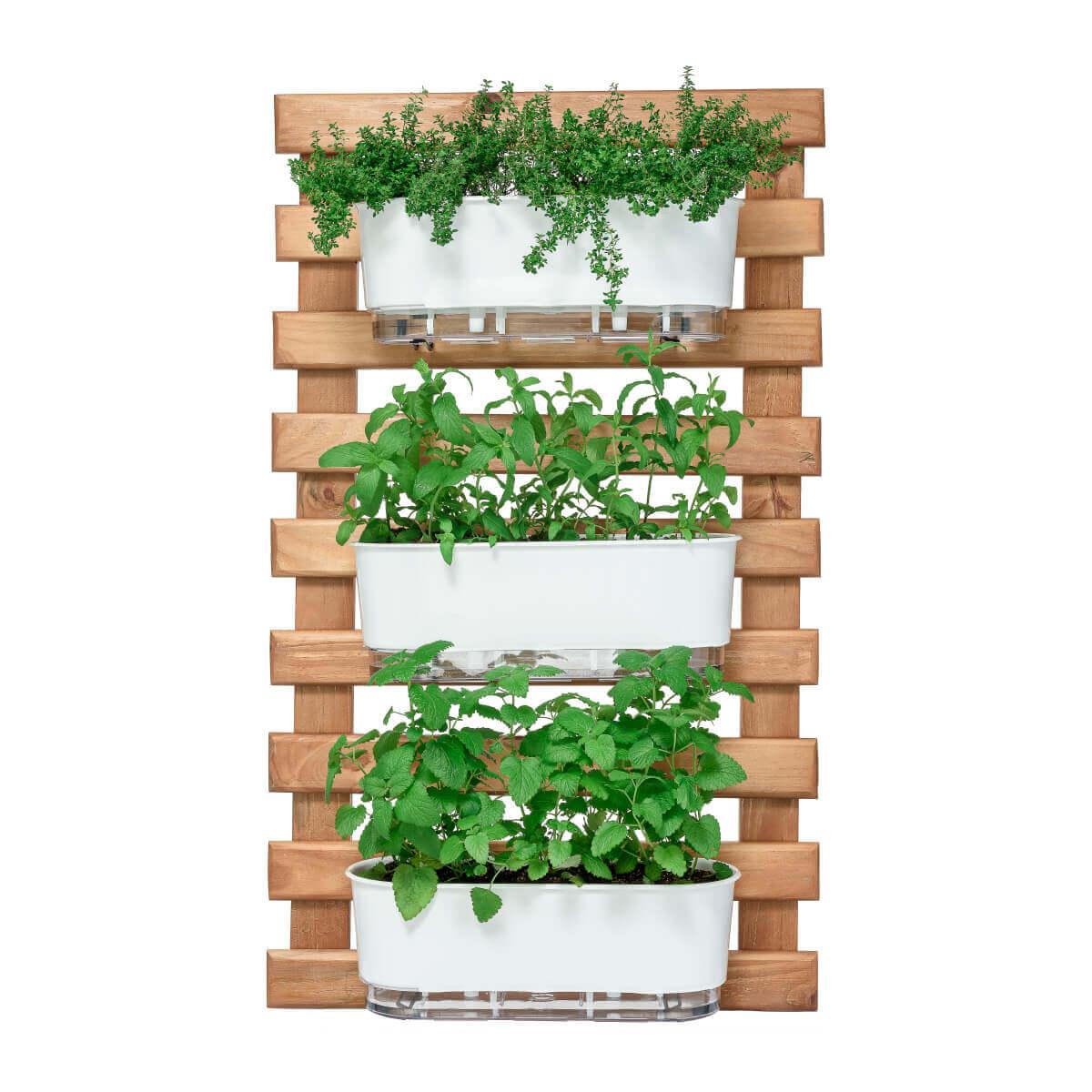 Horta Vertical Caramelo 60cm x 100cm com  3 Jardineiras  - Loja Raiz