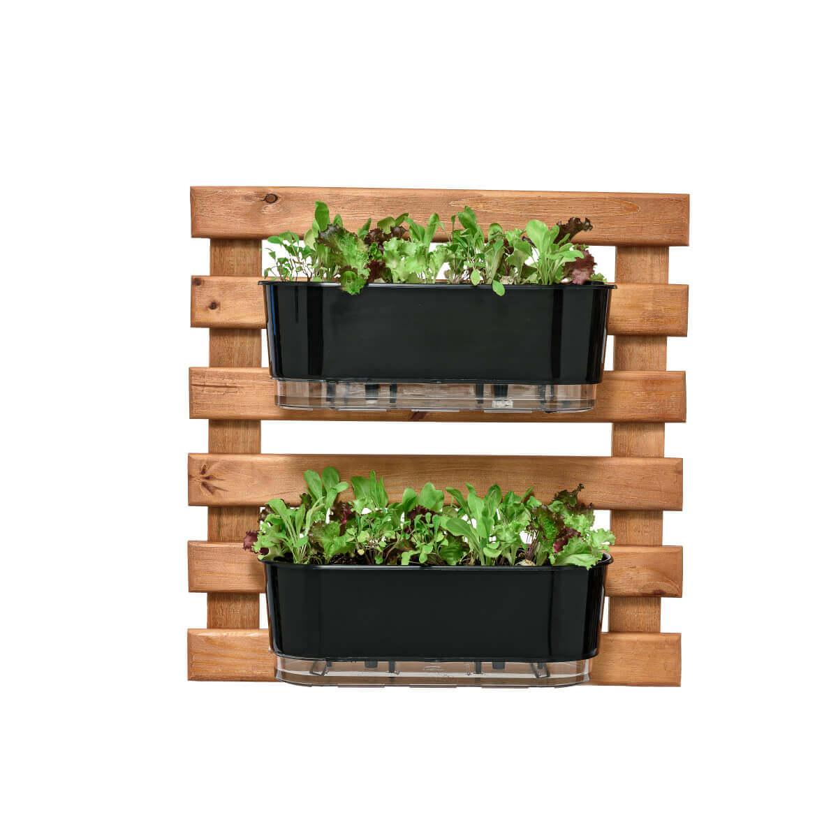 Horta Vertical Caramelo 60cm x 60cm com 2 Jardineiras  - Loja Raiz