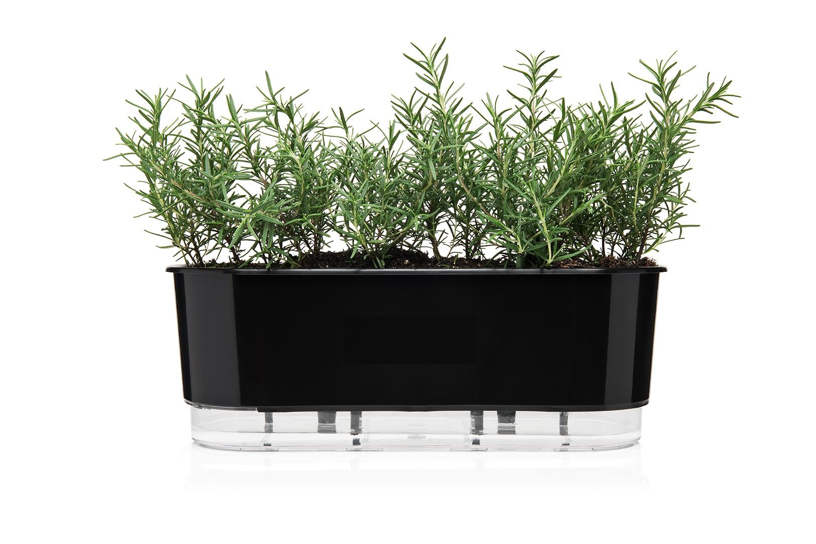 Jardineira Autoirrigável 40cm  - Loja Raiz