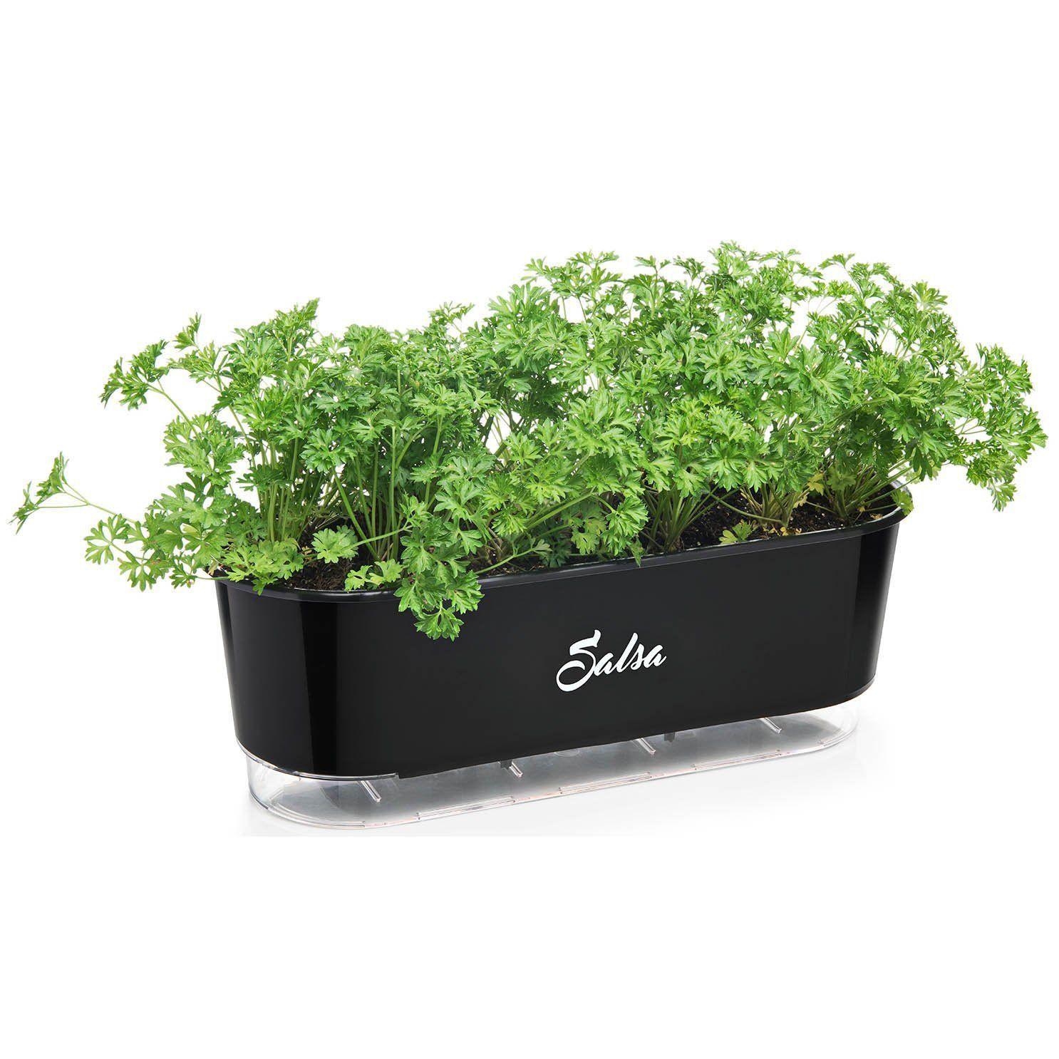 Jardineira Autoirrigável Salsa 40cm Preto