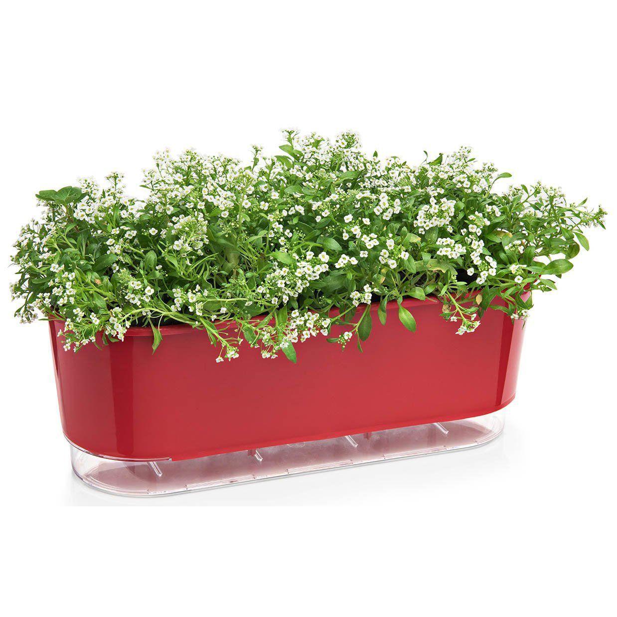 Jardineira Autoirrigável Vermelho 40cm  - Vasos Raiz Loja Oficial