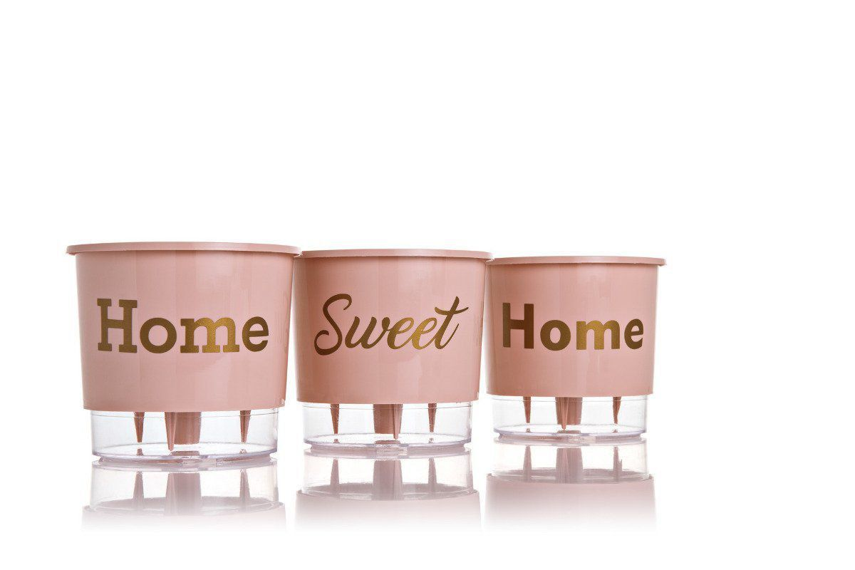 Kit 3 Vasos Autoirrigáveis Médios 16cm x 14cm Home Sweet Home Rosa Quartz