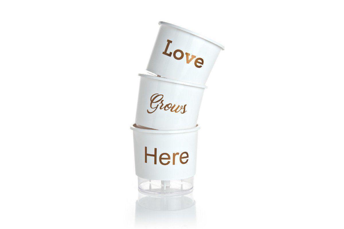 Kit 3 Vasos Autoirrigáveis Médios 16cm x 14cm Love Grows Here Branco